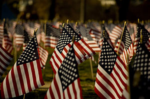 300px-Americanflags4